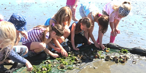 July 27 - July 31: Nature and Science Summer Camp, Ages 5 to 7