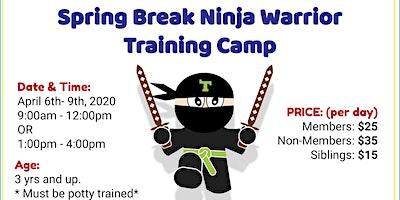Ninja Training Spring Break Camp