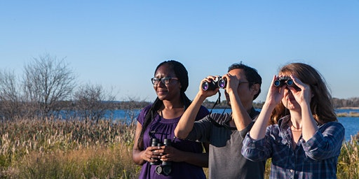 Discover the Important Bird Areas and Birding Trails of MI!