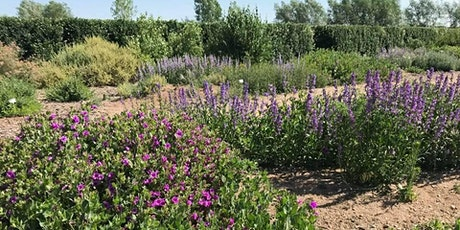 HPEC Workshop Series: Landscape Design with Native Plants tickets