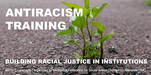 Dismantling Racism: Building Racial Justice in Institutions