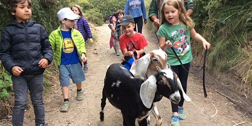 Summer Camp at Slide Ranch - Week 6: July 13 - July 17 - Ranch Rangers (5-13) & Jr Environmental Educators (14-18)
