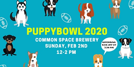 Puppybowl 2020 at Common Space Brewery