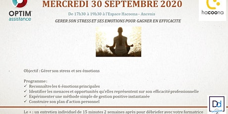 Formation efficacité : Gérer son stress et ses émotions billets