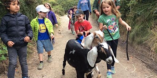 Summer Camp at Slide Ranch - Week 7: July 20 - July 24 - Ranch Rangers (5-13) & Jr Environmental Educators (14-18)