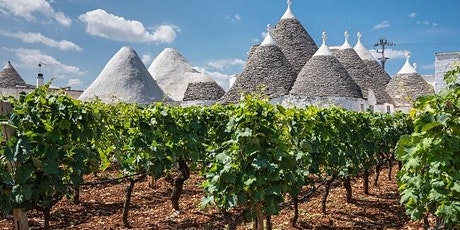 Fermentation Class:  Southern Italy tickets