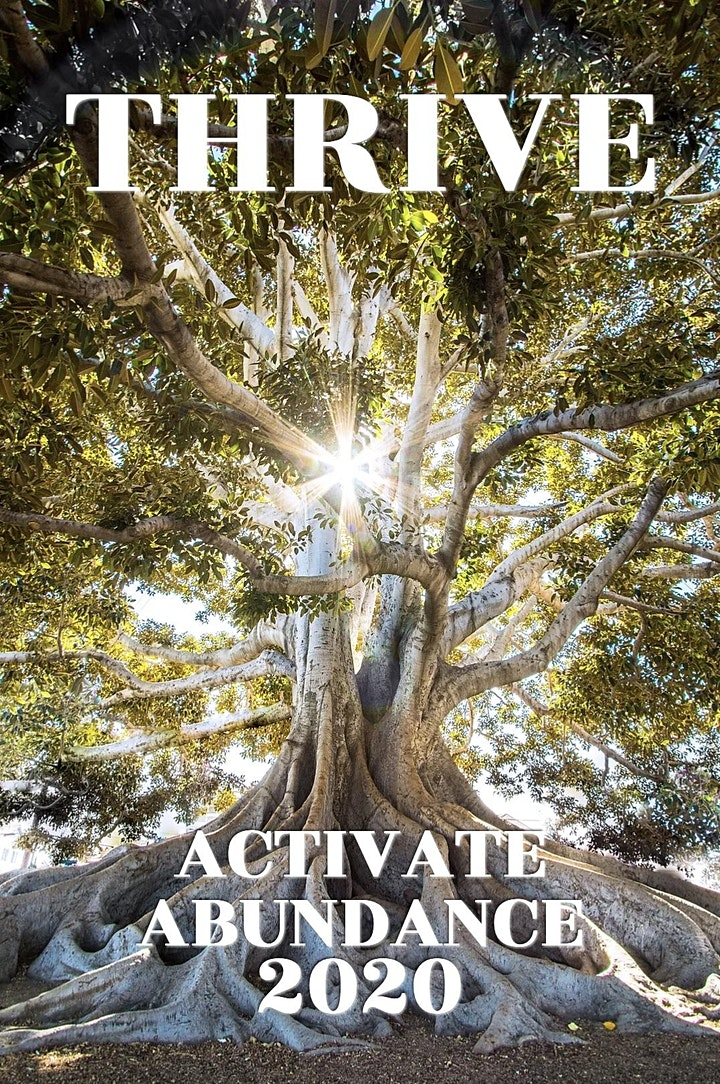Activate Abundance and THRIVE in 2020! image