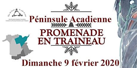 Péninsule Acadienne- Promenade Traineau billets