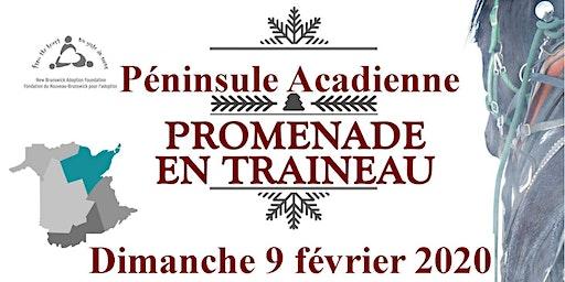 Péninsule Acadienne- Promenade Traineau