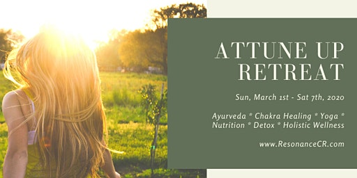 Attune Up Holistic Health Retreat