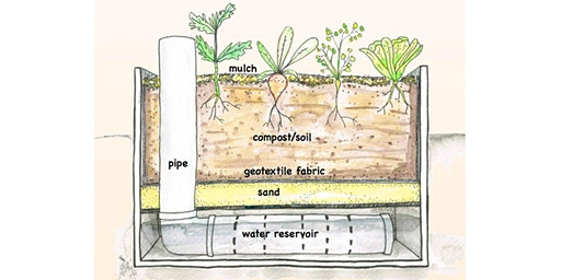 Waterwise Gardening – Wicking Bed Workshop
