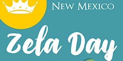 New Mexico Zeta Days
