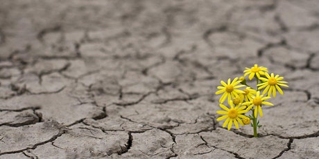 Enhance Emotional Resilience at Work tickets