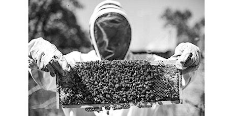 Absolute Beginners Series:  Backyard Beekeeping (04-18-2020 starts at 11:10 AM) tickets