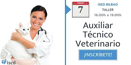 Taller de Ayudante Veterinario 7 de febrero - tarde