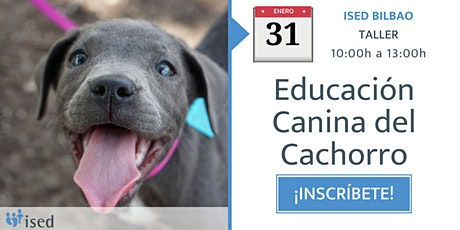 Taller de Educación Canina del Cachorro 31 de enero - mañana entradas