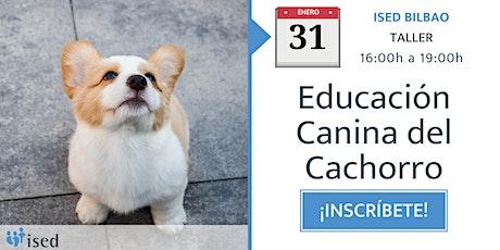 Taller de Educación Canina del Cachorro 31 de enero - tarde entradas