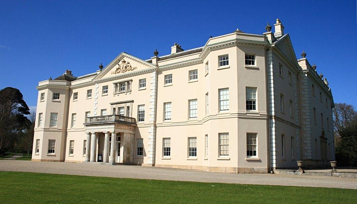 Disney The Lion King  Outdoor Cinema Experience at Saltram House, Plymouth image