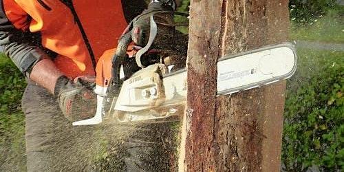 NPTC 0020-03/0020-09 Chainsaw Maintenance & Crosscutting (CS30)