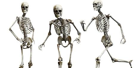 Expertmeeting 'Met je skelet op pad' 4 maart 2020 van 17.00 tot 20.00 uur tickets