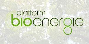 Workshop over de CO2 prestatie van bio-energie