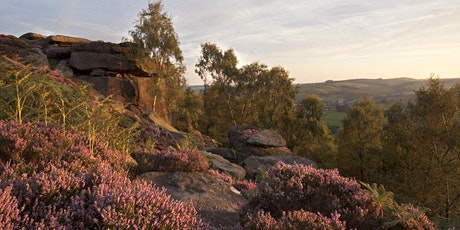 Women's Photography Workshop: Landscape, Trees and Plants, Peak District tickets