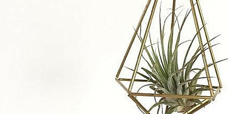Himmeli hanger with air plant workshop tickets
