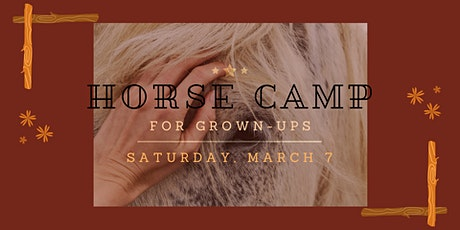 Horse Camp for Grown Ups:  Safety, First Aid, Care and Nutrition tickets