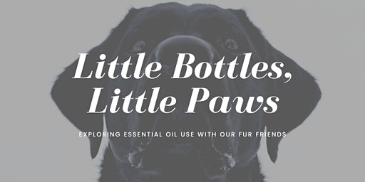 Little Bottles,Little Paws: Exploring Essential Oil use with ourFur Friends