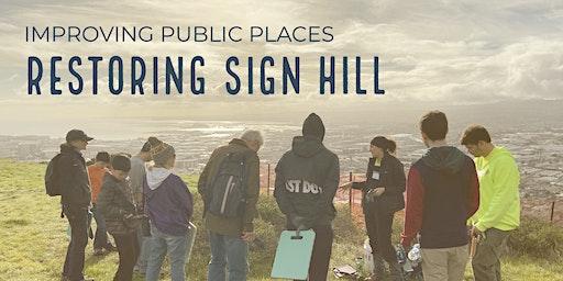 Improving Public Places: Restoring Sign Hill