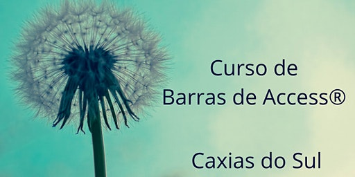 Curso Barras de Access®️: Caxias do Sul