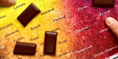 Introduction to Tasting Fine Chocolate using Taste with Colour