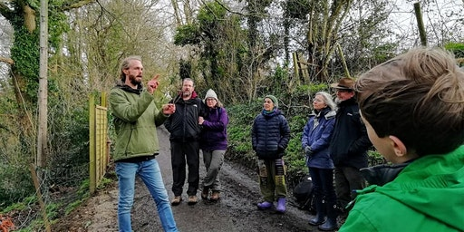 Tree Identification Workshops - Glastonbury - Weekly on Wednesdays