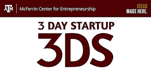 3 Day Startup Spring 2020 Mentoring