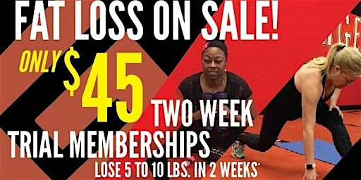 2-Week JAN Trial/On-Boarding Session 2 Chicagoland Fat Loss Camp Oaklawn