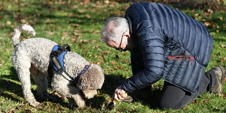 Truffles: Cultivation, Harvest & Truffle Dogs tickets