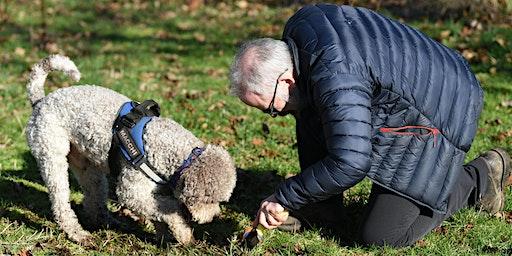 Truffles: Cultivation, Harvest & Truffle Dogs