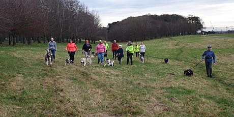 Pawsitive Fitness Hiking Class tickets