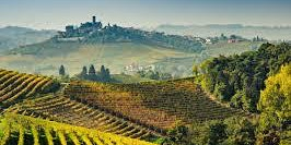 Wines of Piedmont, Italy - Tasting and Dinner Pairing