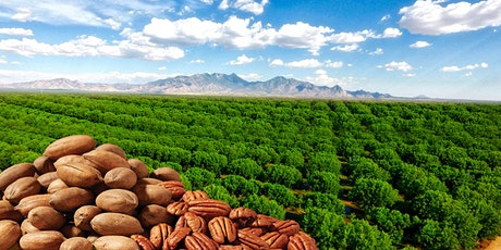 Green Valley Pecan Orchard Tour- NEW DATES 3/6 and 4/3  at 10:45 a.m. tickets