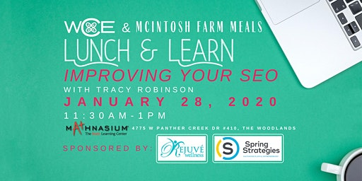 Women's Council of Entrepreneurs Lunch and Learn ~Improving your SEO
