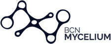 BCN Mycelium logo