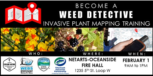 Become a Weed Detective: Invasive Plant Mapping Training