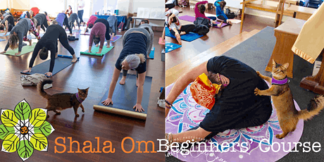 Yoga: Beginners' Course tickets
