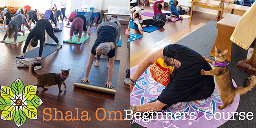 Yoga: Beginners' Course