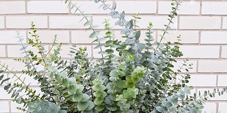 Fresh Eucalyptus Wreath Workshop tickets