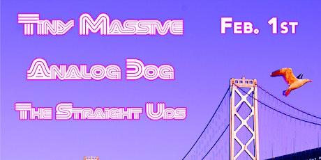 Tiny Massive, Analog Dog, The Straight Ups @ The Starry Plough Pub tickets