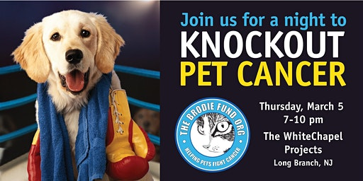 A Night To Knockout Pet Cancer