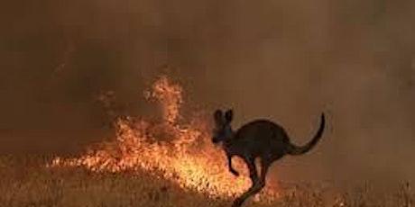 Bushfire Relief Fundraiser for WWF @dcnmc tickets