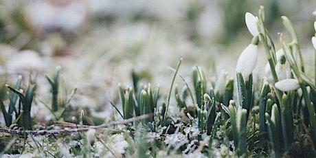 Ostara/Spring Equinox tickets